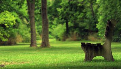 Зелёные зоны отдыха.